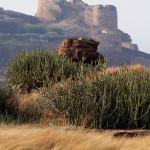 Friday Photo: Badami