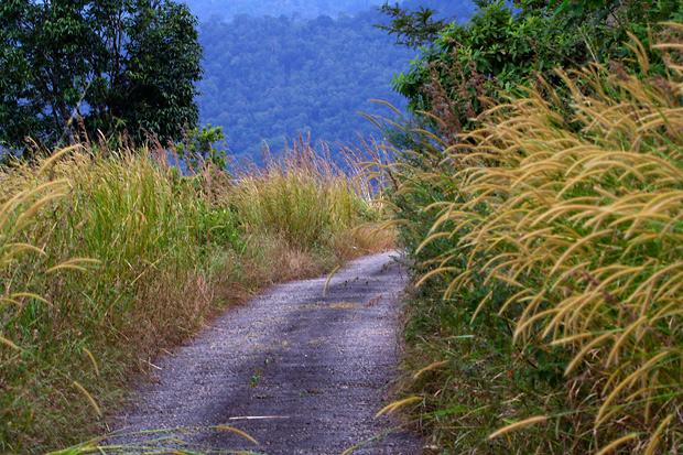 chikmagalur roads