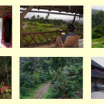 TravelWise – Vignettes of Coorg – A Tour of Coorg