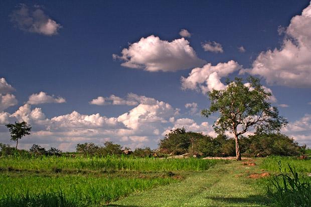 fields_clouds