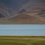 Ladakh – People – A few bad experiences