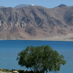 Ladakh – Spangmik Village on the banks of Pangong Lake