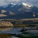 Ladakh – A brief visit to Tso Kar