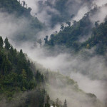Photographing landscapes in foggy weather