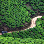 Landscapes of Munnar – A Photography Workshop