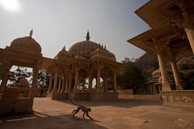 Chhatris at Gaiter, Jaipur