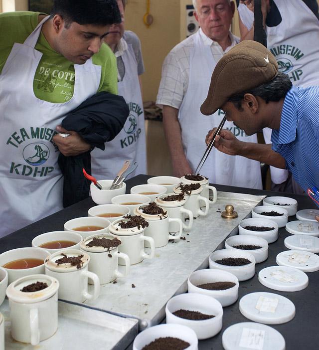 tea tasting in munnar