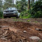 On a Coffee Caravan: The Great Ford Endeavour Drive to Coorg