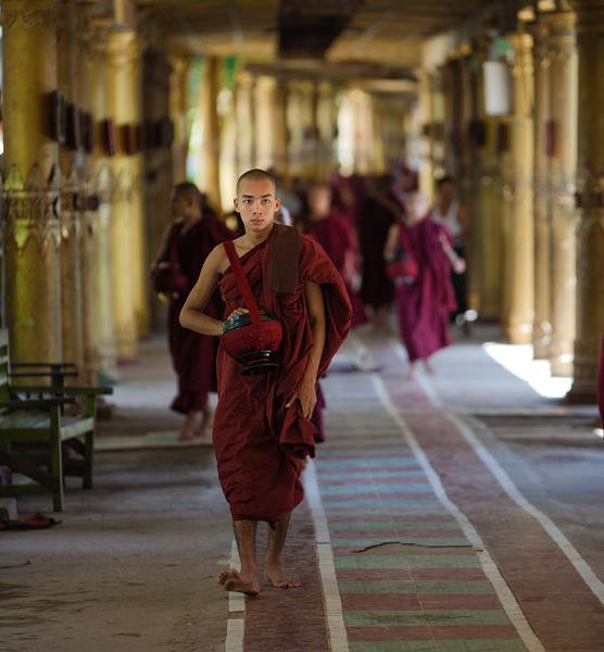 A Monk at a Monastery in Myanmar