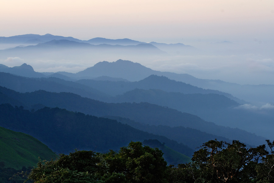 Hills of Coorg